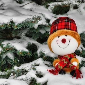 Câteva melodii de Crăciun pe care să le asculți când ninge