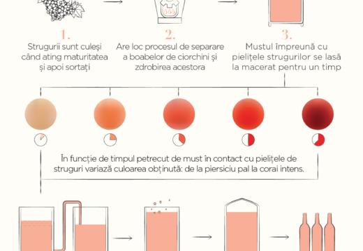 Un infografic fain despre cum se face vinul Rose